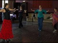 Flamenco1LR